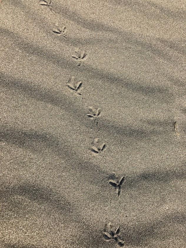 極道BL小説の舞台:足跡